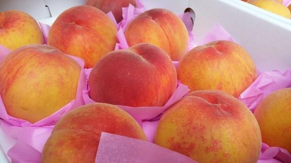 peach-415370_1280