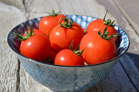 tomatoes-1449243_1280