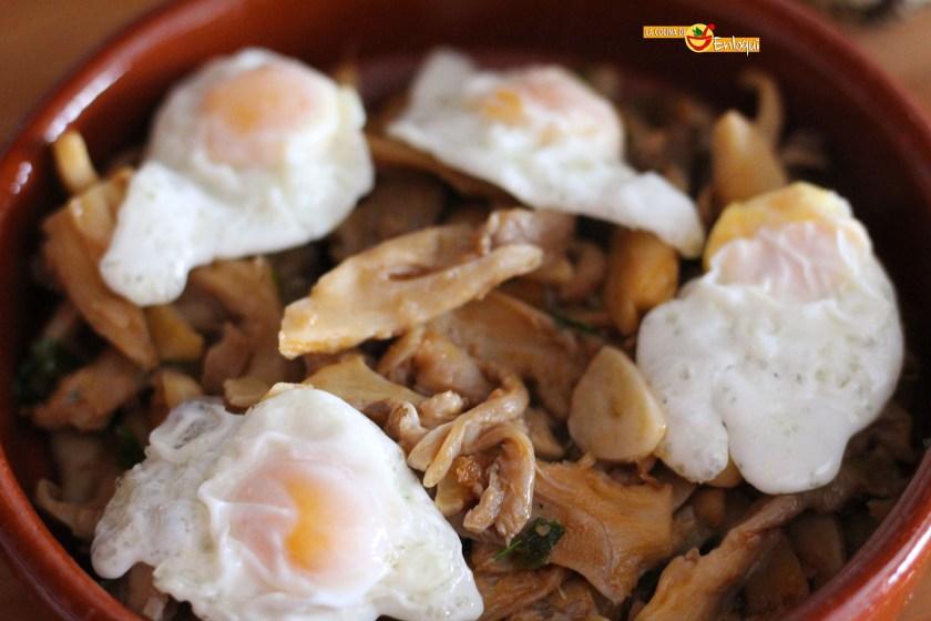 21-11-16-setas-con-pimenton-y-huevos-de-codorniz-3