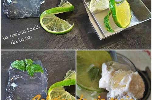 gelatina de gin tonic