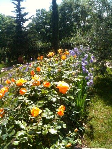spring_time-la-compagnia-del-chianti.