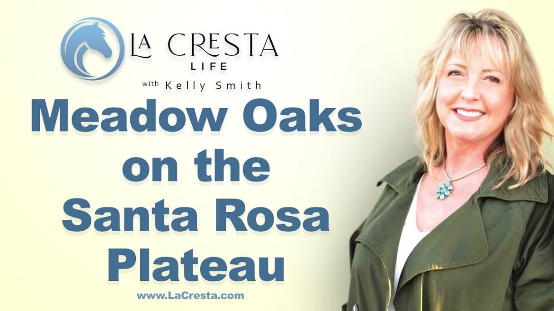 Meadow Oaks on the Santa Rosa Plateau