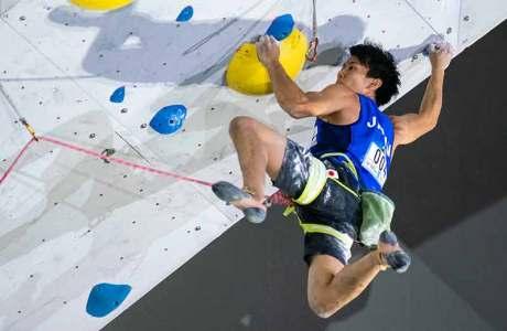 IFSC Kletterwettkampf Toulouse - Infos, Programm und Live-Stream
