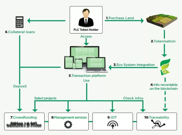 Écosystème Fieldcoin