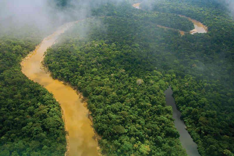 Au Pérou, la forêt amazonienne est dotée d'une riche biodiversité. (Photo: Amazon-Images / Alamy)