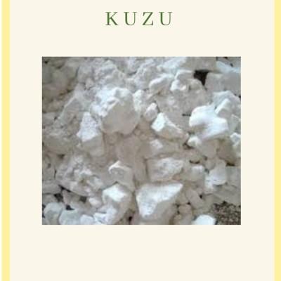 KUZU, un amico del sistema GastroEnterico