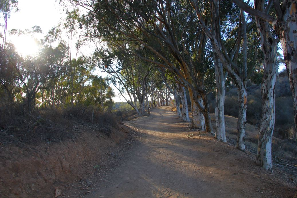 Will Rogers Park Inspiration Loop Trail