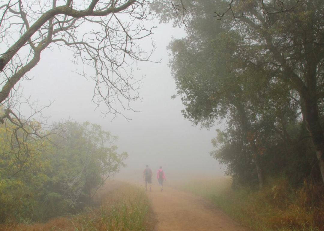 Los Liones trail hikers
