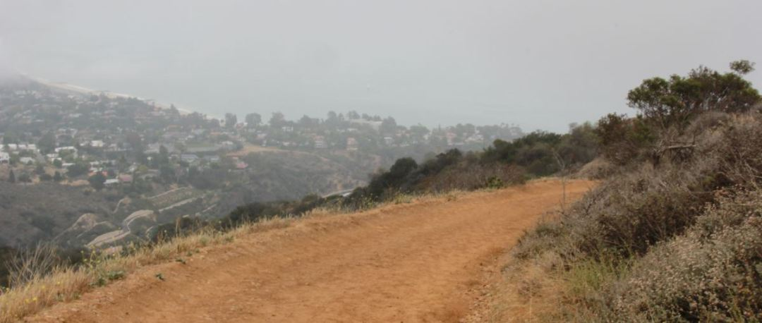 Los Liones fire road