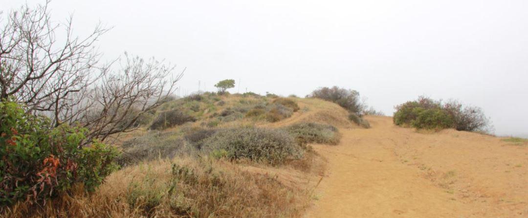Los Liones trail Parker Mesa