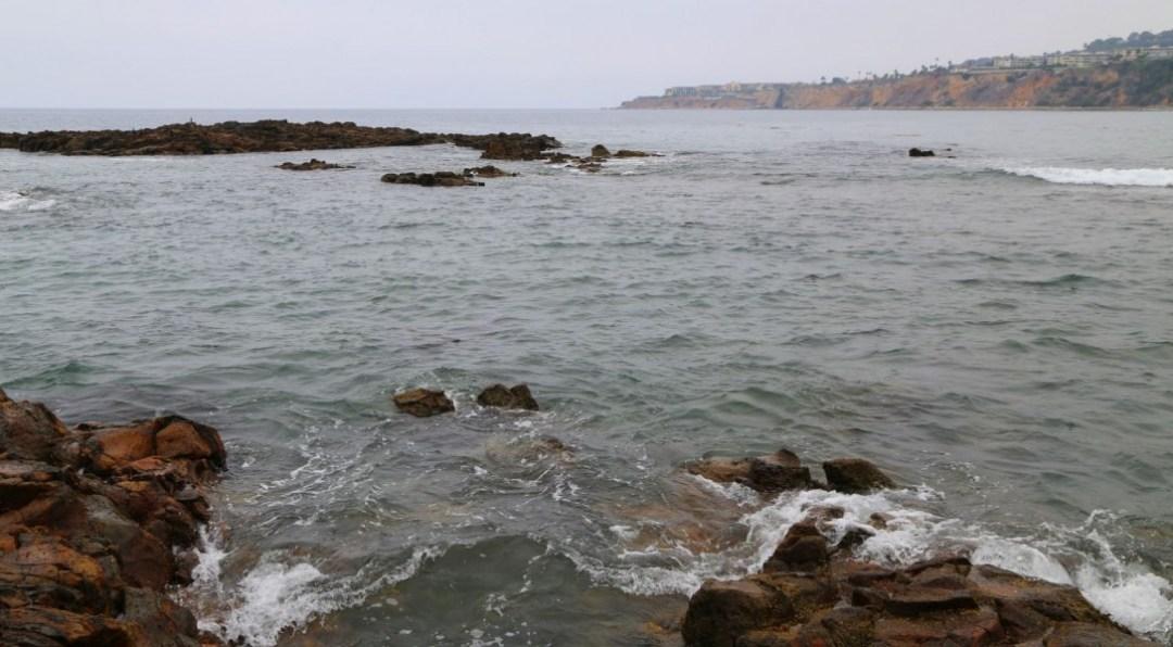 Abalone Cove tide pool area
