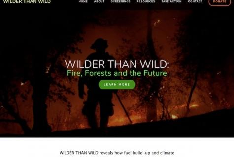 wilderthanwild