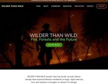Wilder than Wild