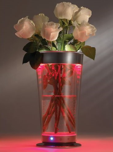 The LED Vase With Light Color Adjustment