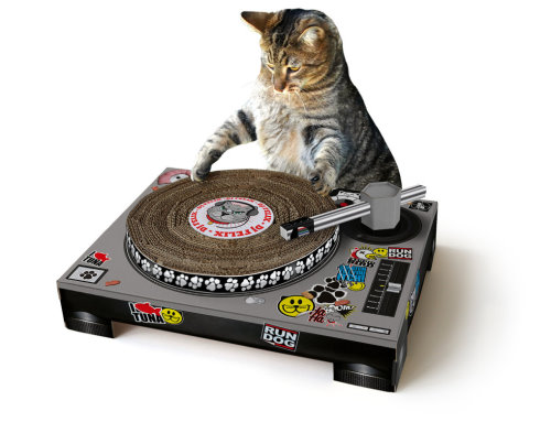 Turntable Scratch Mat for Your Cat