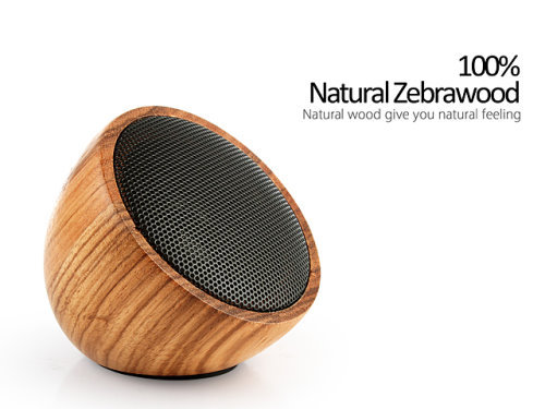 Bluetooth Speaker Made From Zebrawood (2)