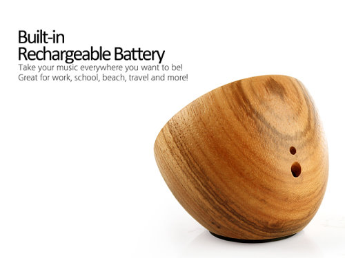 Bluetooth Speaker Made From Zebrawood (3)