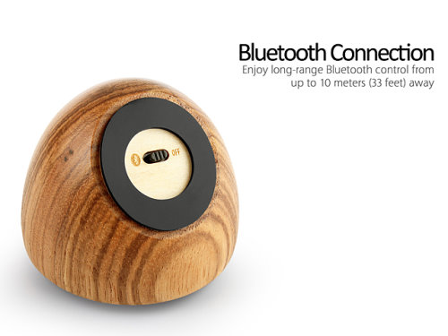 Bluetooth Speaker Made From Zebrawood (4)