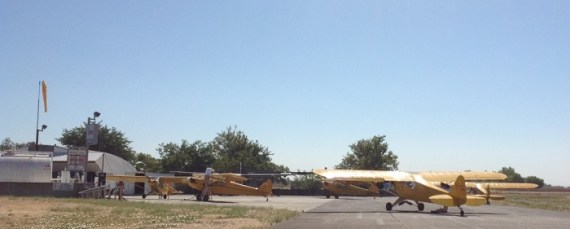 Five thirsty yellow Cubs at Yolo Airport. Yolo Traffic....flight of five Yellow Cubs. Made for quite a radio transmission.