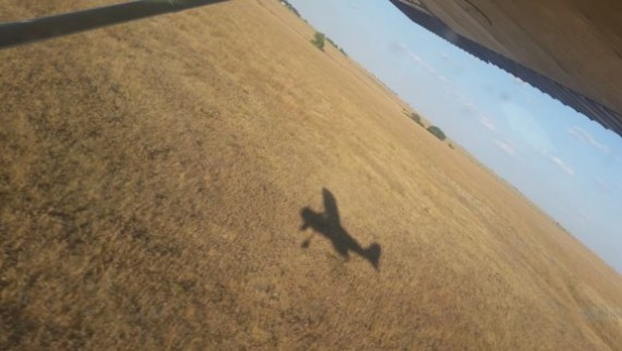 Victoria Swartzendruber shadow