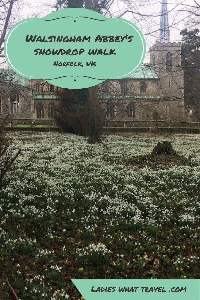 Walsingham Abbey snowdrops | Ladies What Travel