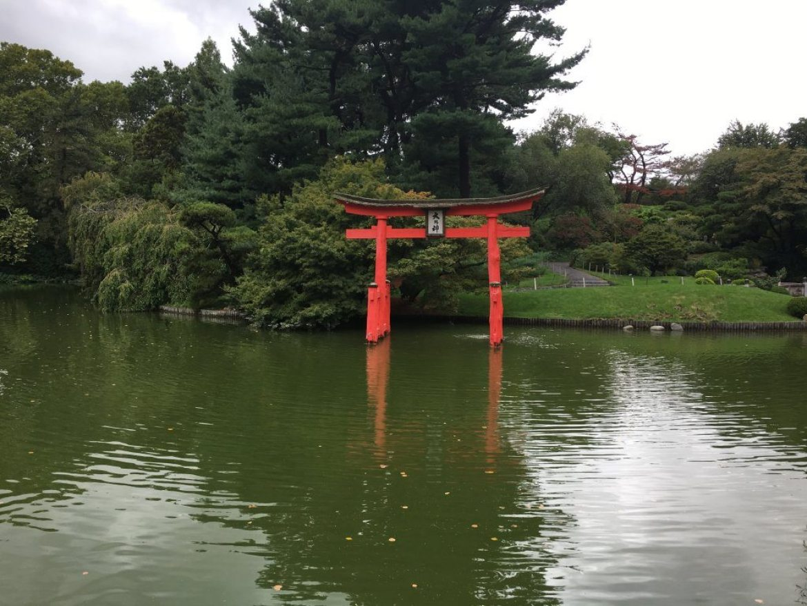 Japanese Hill and Pond Garden