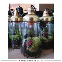 www.wantsandneeds.nl