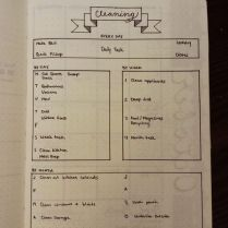 http://www.beckasaurus.stfi.re/bullet-journal-cleaning-routine/?sf=dpbrxxp#aa