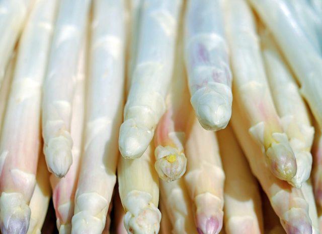 asperge - witte goud