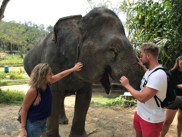 Playing with the giants at the Elephant Jungle Sanctuary, Phuket, Thailand
