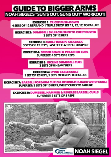 Noah Siegel's Guide to Bigger Arms