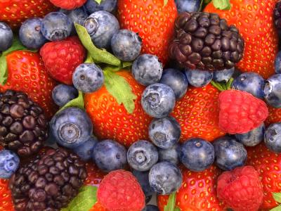 Risultati immagini per frutti di bosco e alzheimer