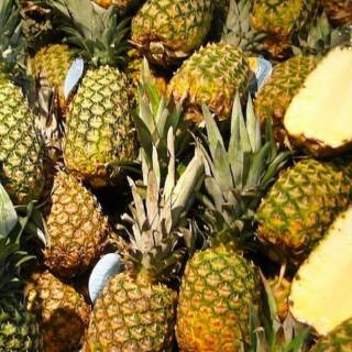 Diabete Dieta Frutta Quale Va Mangiata Con Moderazione