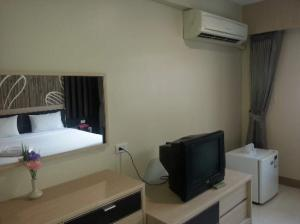 The Green View view of room amenities TV, AC and fridge