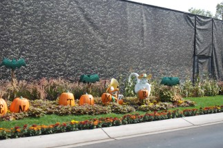 Halloween Time décor along tram route from Mickey & Friends Parking Structure to Downtown Disney. | Photo credit: Krista
