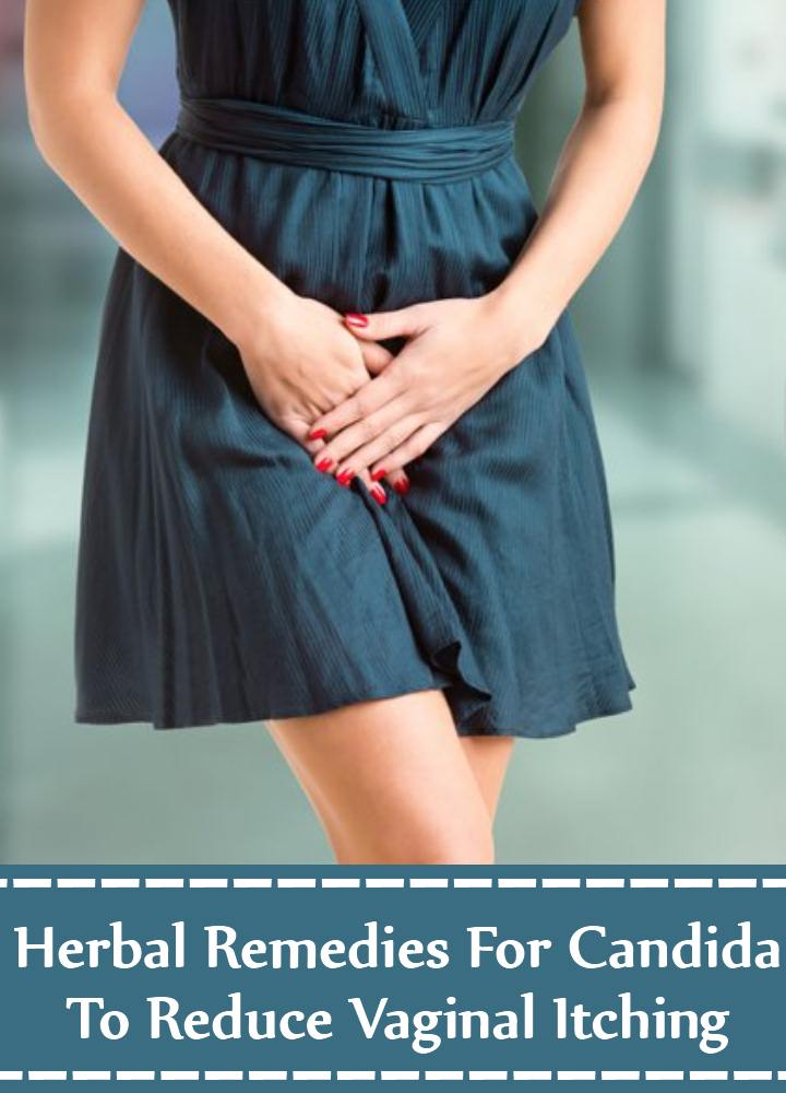 Herbal Cure For Candida To Reduce Vaginal Itching