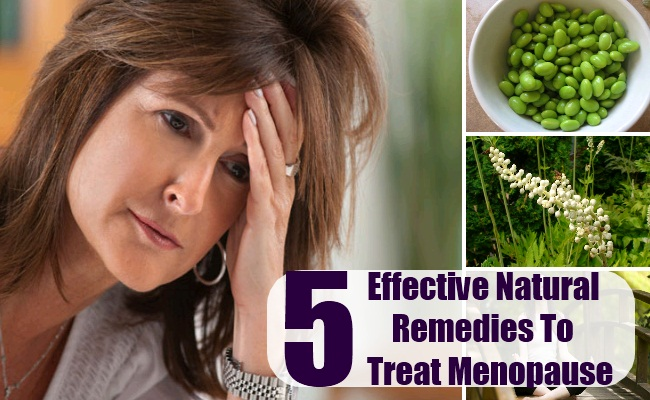 Natural Remedies To Treat Menopause