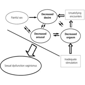Cancer And Sexual Dysfunction In Women