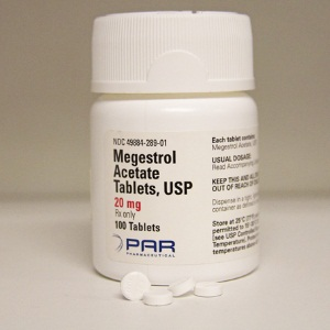 Megestrol for hot flashes