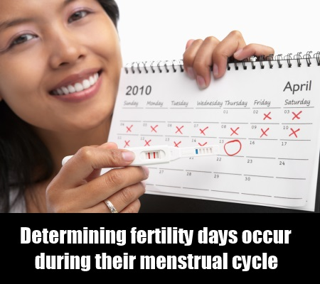 Determining Fertility Days