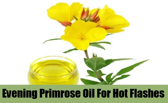 Evening Primrose Oil For Hot Flashes