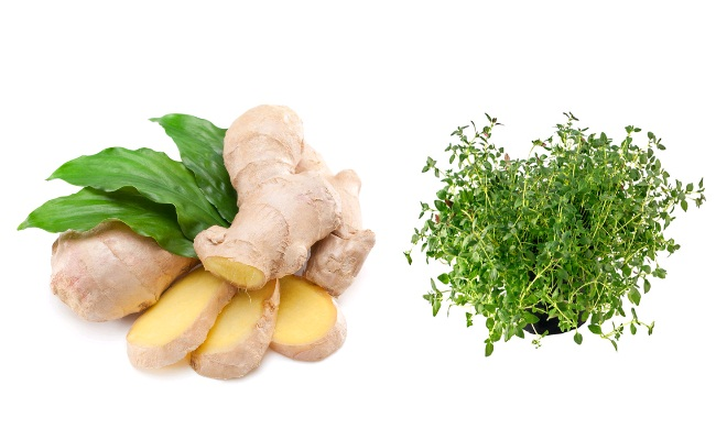 Ginger And Thyme