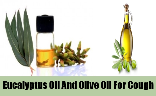 Eucalyptus Oil And Olive Oil