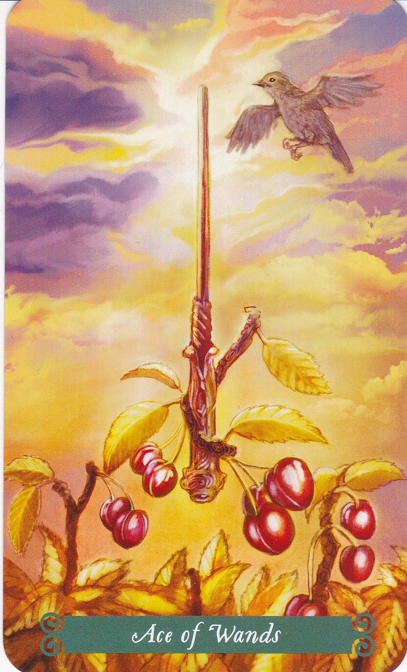 Relationship Energy for Tuesday November 21, 2017 – Ace of Wands