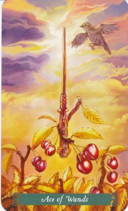 Relationship Energy for Tuesday November 21, 2017 - Ace of Wands