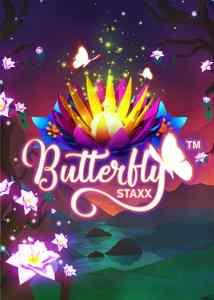butterfly_staxx.jpg