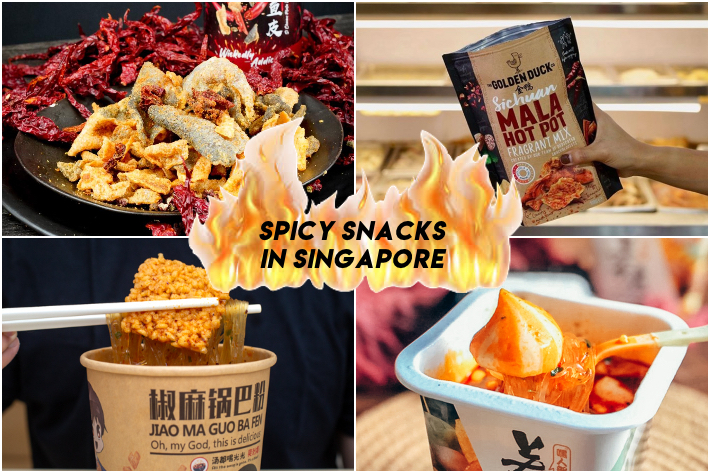 SPICY SNACKS SINGAPORE COLLAGE