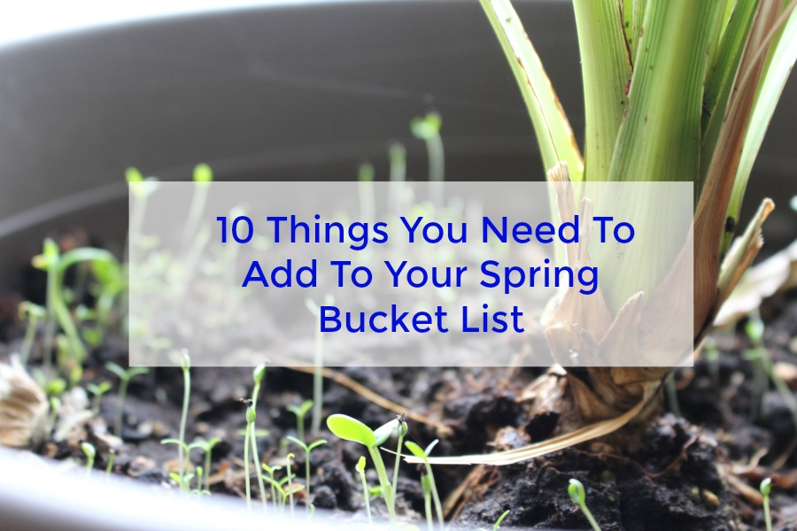 10 Things You Need To Add To Your Spring Bucket List
