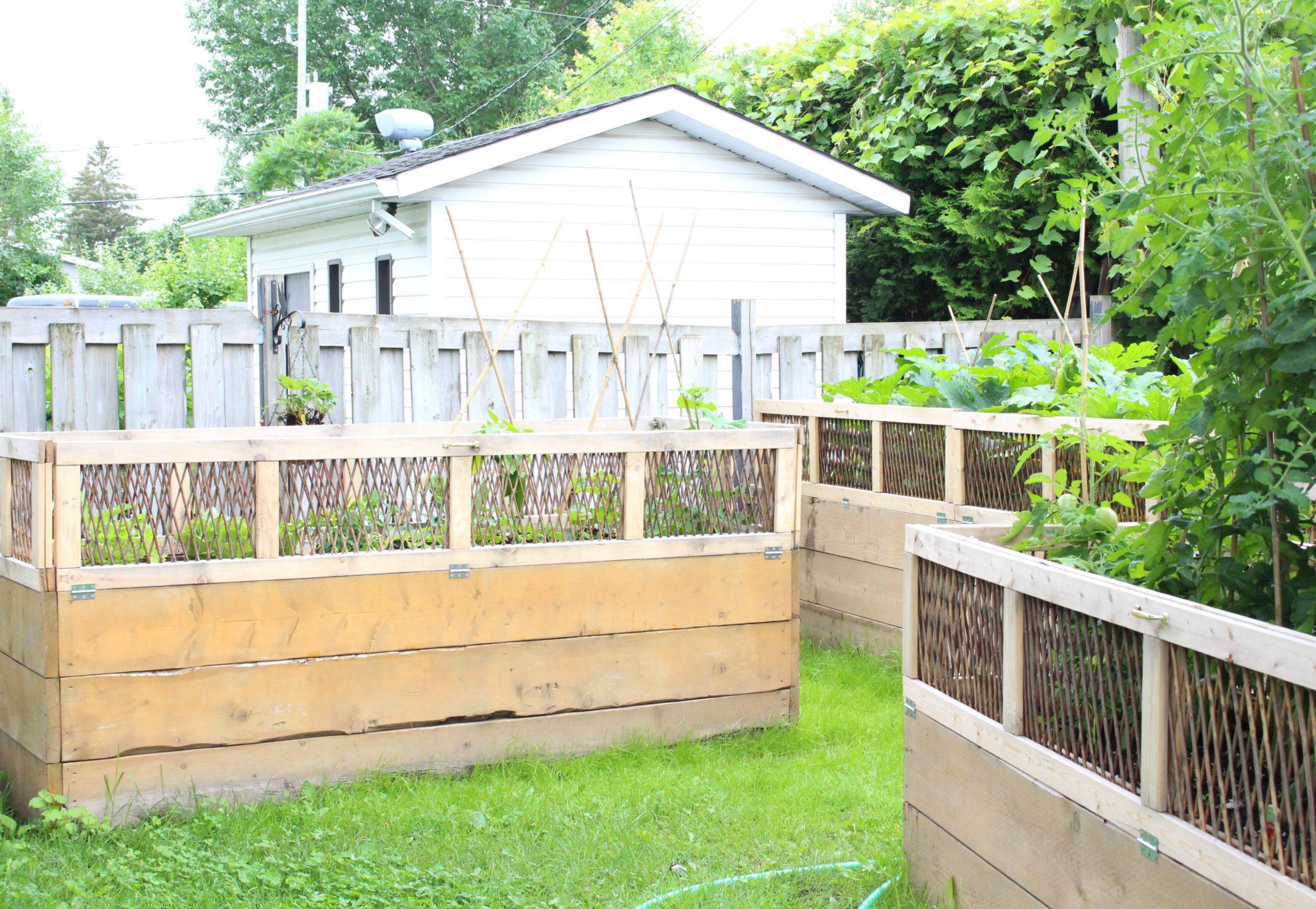 What's In Our Garden - Updated Garden Tour