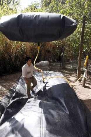 Fabrica biogás con excrementos de elefantes